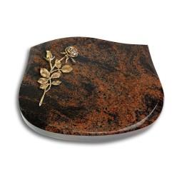 Cassiopeia/Indisch-Black Rose 13 (Bronze)