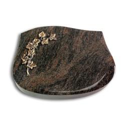Cassiopeia/Aruba Efeu (Bronze)