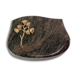 Cassiopeia/Aruba Gingozweig 1 (Bronze)