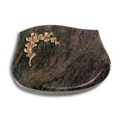 Cassiopeia/Aruba Gingozweig 2 (Bronze)