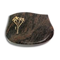 Cassiopeia/Aruba Lilie (Bronze)