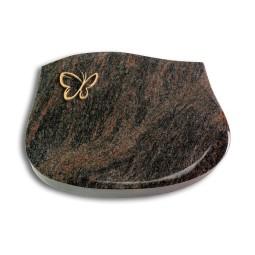 Cassiopeia/Aruba Papillon (Bronze)