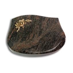 Cassiopeia/Aruba Rose 1 (Bronze)