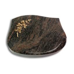 Cassiopeia/Aruba Rose 5 (Bronze)