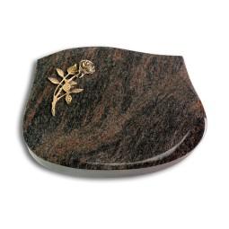 Cassiopeia/Aruba Rose 6 (Bronze)