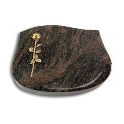 Cassiopeia/Aruba Rose 12 (Bronze)