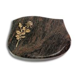 Cassiopeia/Aruba Rose 13 (Bronze)