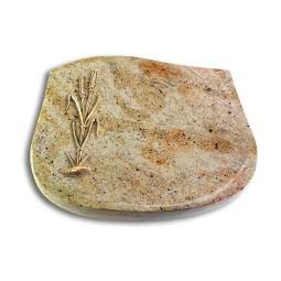 Cassiopeia/Kashmir Ähren 2 (Bronze)