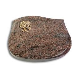 Cassiopeia/Orion Baum 3 (Bronze)