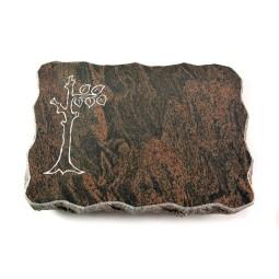 Barap Pure Baum 1