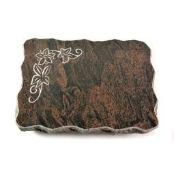 Barap Pure Blätter