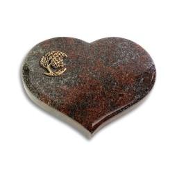 Coeur/Orion Baum 1 (Bronze)