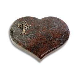 Coeur/Orion Baum 2 (Bronze)