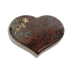 Coeur/Orion Rose 7 (Bronze)