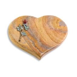 Coeur/Paradiso Rose 7 (Color)