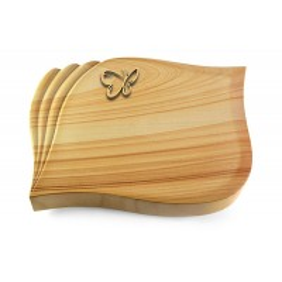 Eterna/Rainbow Papillon (Bronze)