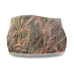 Galaxie/Aruba Ähren 2 (Bronze)