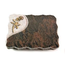 Barap Folio Rose 5 (Bronze)