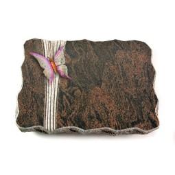 Barap Folio Orchidee (Color)
