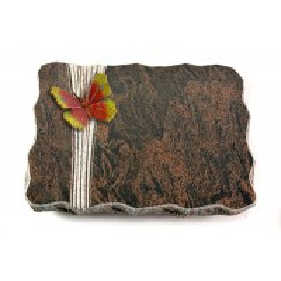 Barap Folio Papillon 1 (Color)