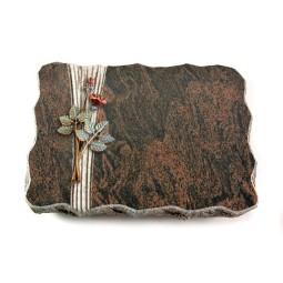 Barap Folio Rose 4 (Color)