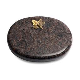 Rondo/Aruba Rose 3 (Bronze)
