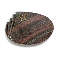 Waves/Orion Papillon (Bronze)