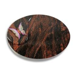 Yang/Indisch-Impala Papillon 1 (Color)