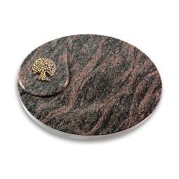 Yang/Aruba Baum 3 (Bronze)