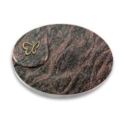 Yang/Aruba Papillon (Bronze)