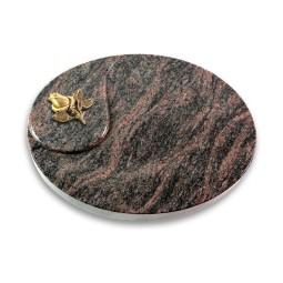 Yang/Aruba Rose 3 (Bronze)