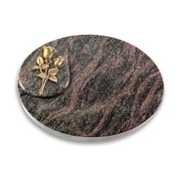 Yang/Aruba Rose 11 (Bronze)