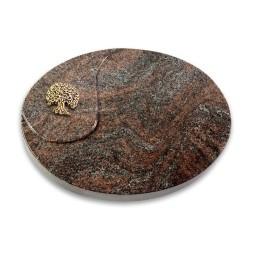 Yang/Orion Baum 3 (Bronze)