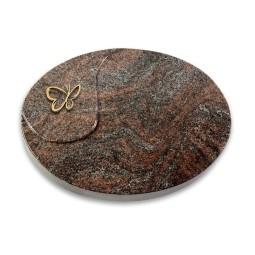 Yang/Orion Papillon (Bronze)