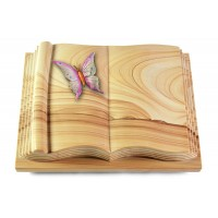 Antique/Rainbow Papillon 1 (Color)