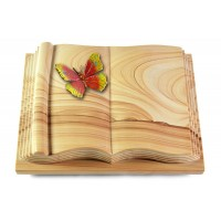 Antique/Rainbow Papillon 2 (Color)