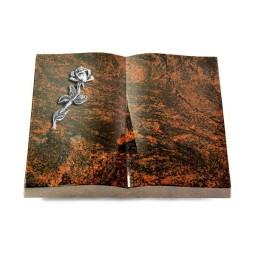 Livre/New Kashmir Rose 7 (Alu)