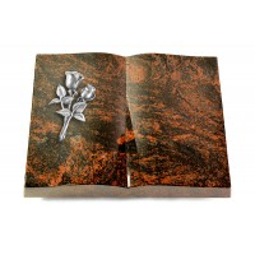 Livre/New Kashmir Rose 11 (Alu)