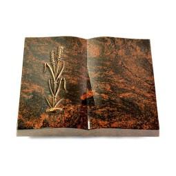 Livre/New Kashmir Ähren 2 (Bronze)