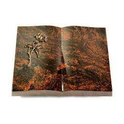 Livre/New Kashmir Rose 2 (Bronze)