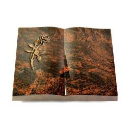 Livre/New Kashmir Rose 6 (Bronze)