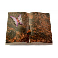 Livre/New Kashmir Papillon 1 (Color)